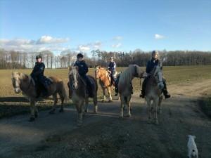 Foto Naturerlebnisse mit dem Pferd